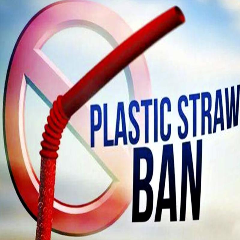 Vad ska jag byta ut efter att plaststrån är förbjuden?
